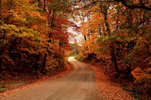 Autumn-Road