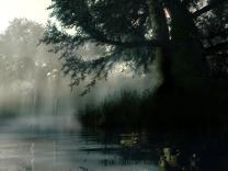 misty_river1